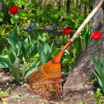 5 Essential Tasks For Spring Prep