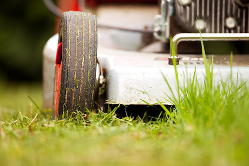 Causes of Lawn Mower Not Starting Forney
