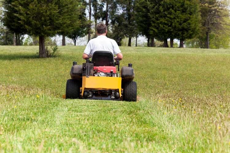 comfortable-lawn-equipment