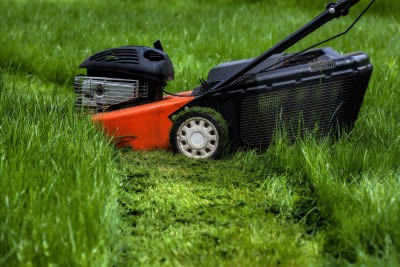 how-to-fix-overgrown-lawn-mower-dallas