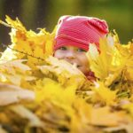 Here Are 5 Things You Can Do With All Those Fallen Leaves Other Than Throw Them Away