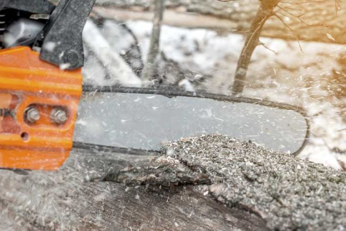 how-to-care-for-chain-saw-in-winter