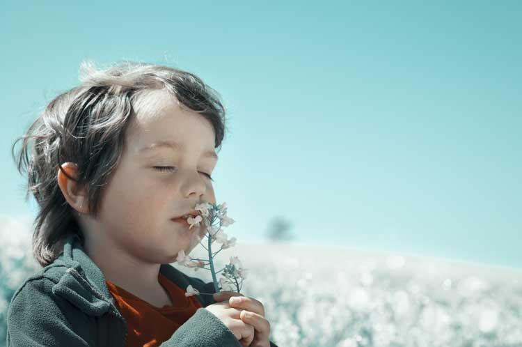 how-to-enjoy-outdoors-allergy-free