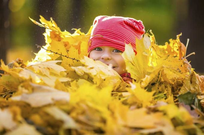 what-to-do-with-fall-leaves-in-your-backyard